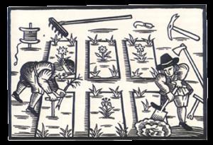 Gardeners Labyrinth